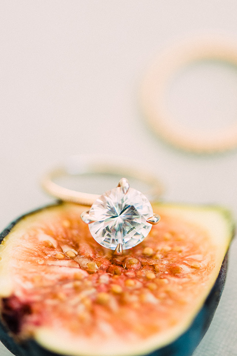 Inn-at-rancho-santa-fe-shoot-fig-with-ring