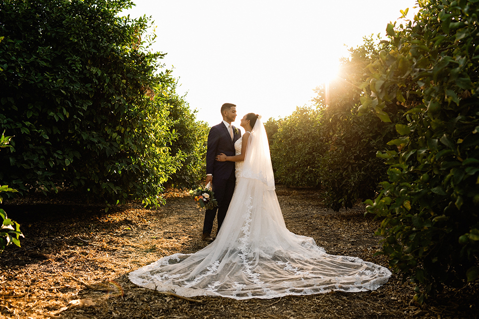 San diego autumn inspired outdoor wedding at limoneira ranch bride form fitting lace gown with straps and a v neckline with open back design and long veil with groom cobalt notch lapel suit by allure men with a matching vest and white dress shirt with a long white tie and white floral boutonniere standing and hugging at sunset