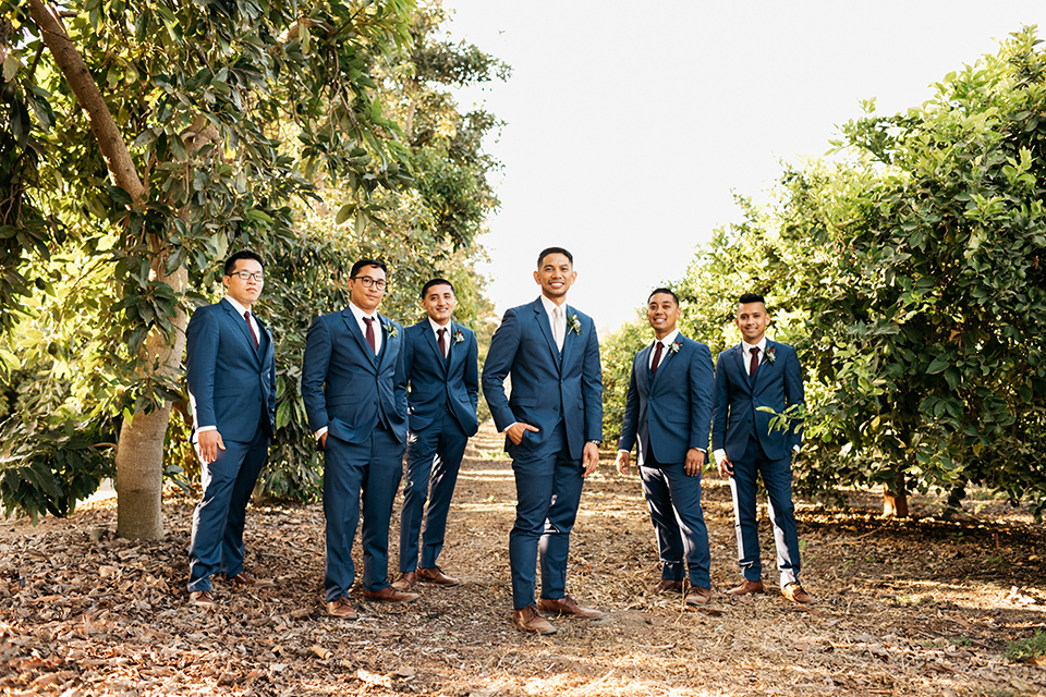 San diego autumn inspired outdoor wedding at limoneira ranch groom cobalt blue notch lapel suit with a matching vest and white dress shirt with a long white tie and white floral boutonniere standing with groomsmen cobalt blue suits with long burgundy ties and burgundy floral boutonnieres