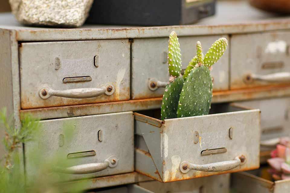 Desert-view-tower-cacti-decor