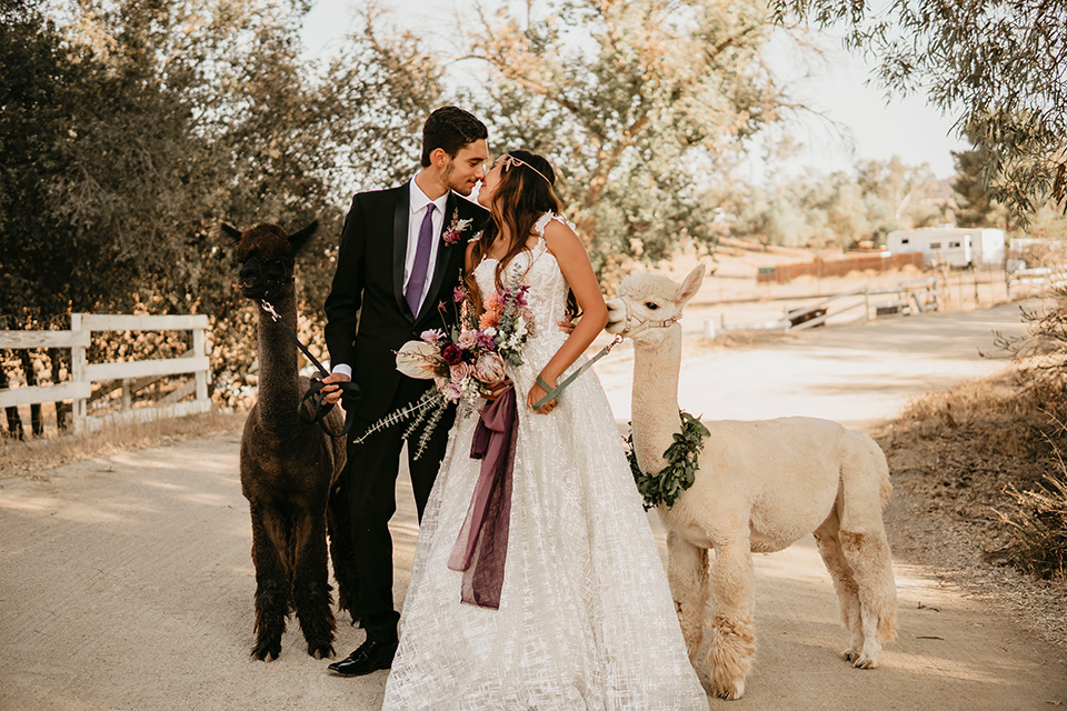 Boho chic elopement wedding with the bride in an ivory lace ball gown with a gold chain headpiece and the groom in a black suit with a black long tie with an alpaca