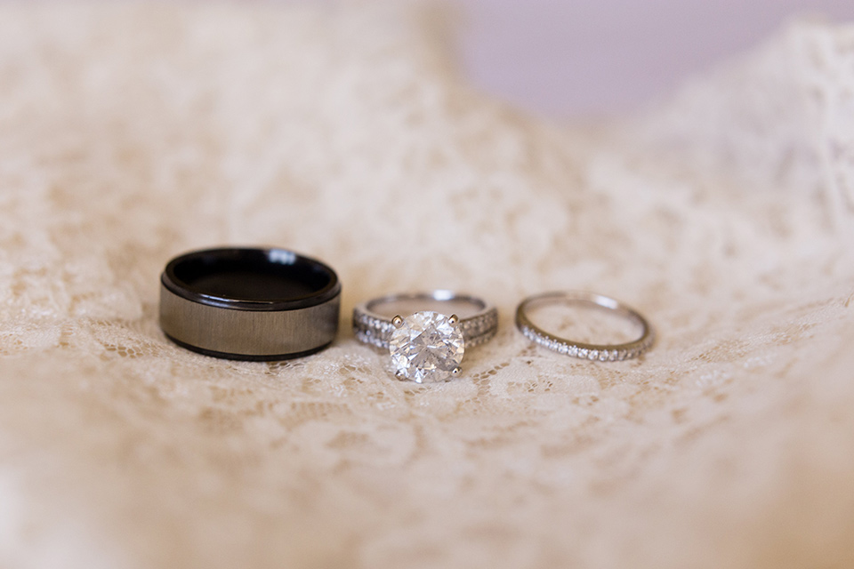 walt-disney-concert-hall-rings