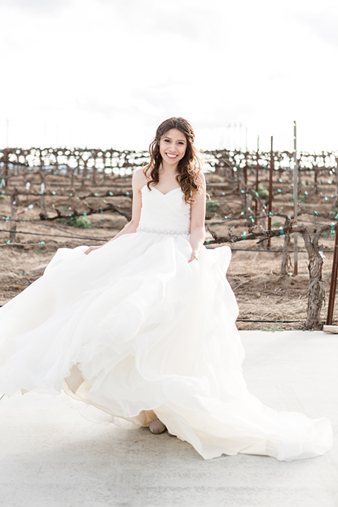 Lorimar-winery-shoot-bride-standing-alone-in-a-tulle-ballgown-and-a-sweetheart-neckline