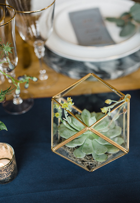 succulents on a decorated table