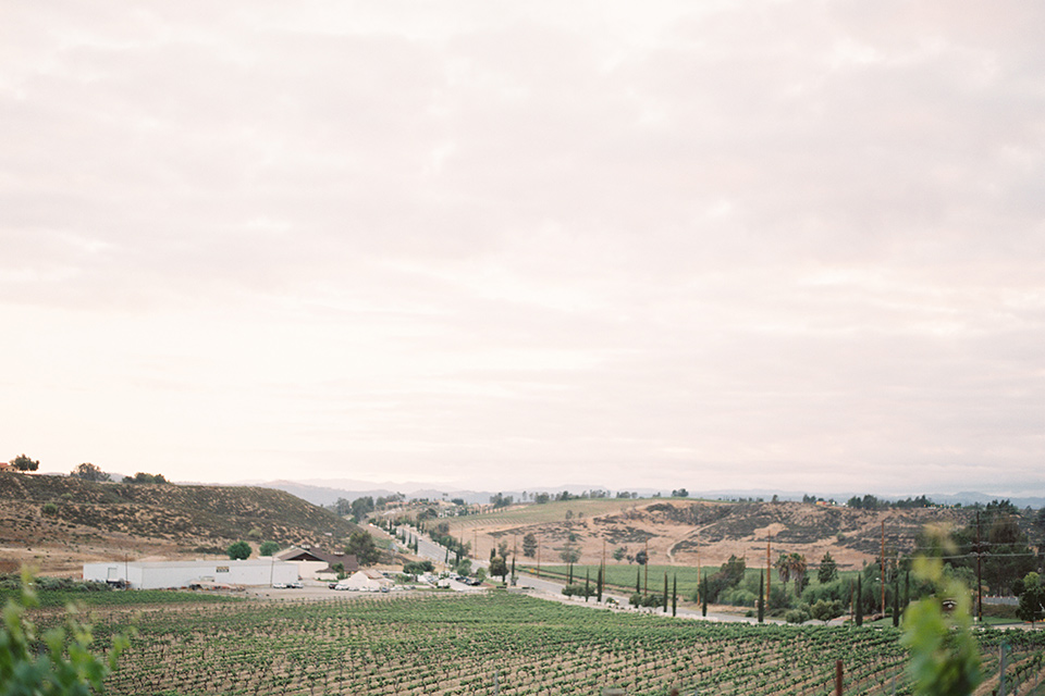 venue with vineyards