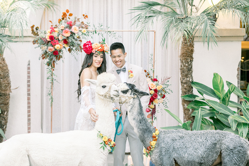 Villa Del Sol bride and groom smiling at animals the bride is in a bohemian gown with off the shoulder detail with long sleeves the groom is in a tan coat with light grey pants and a grey velvet bow tie