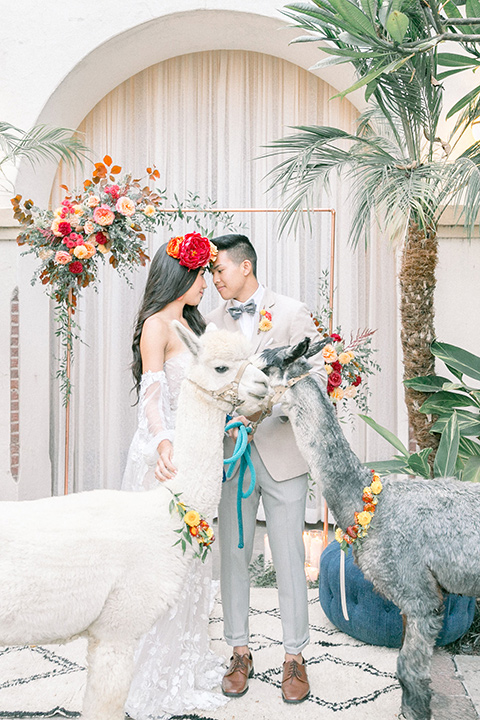 Villa Del Sol bride and groom with alpacas the bride is in a bohemian gown with long sleeves and off the shoulder detail her hair is in a long wave with a floral crown the groom is in a tan suit coat with light grey pants and a grey velvet bow tie