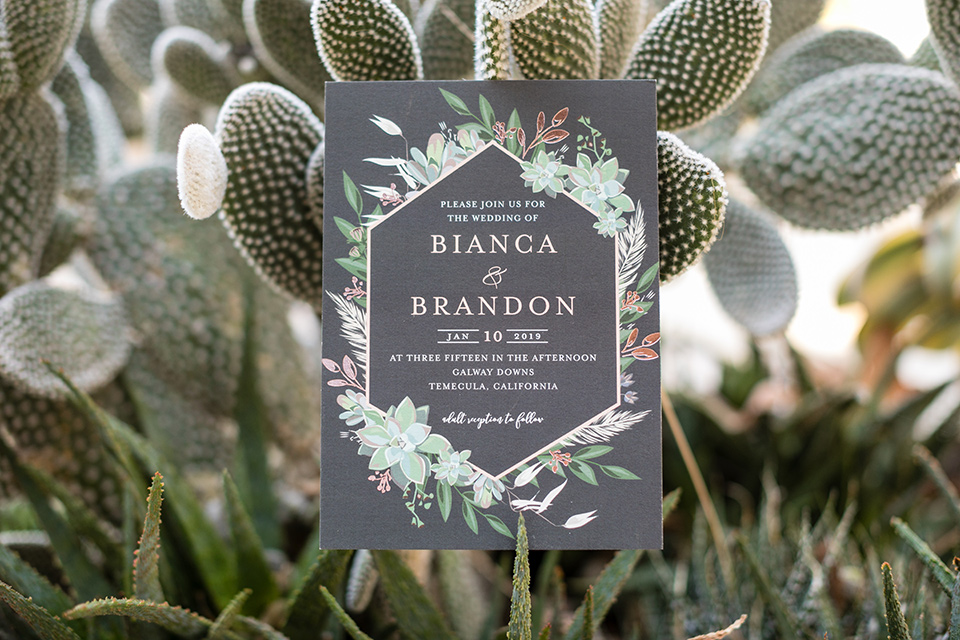 gallway-downs-wedding-invitations-with-a-cacti-design-and-simle-calligraphy