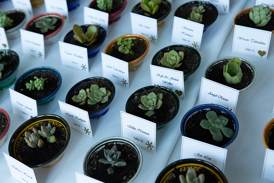 Palm-Springs-wedding-at-the-parker-succulent-gifts