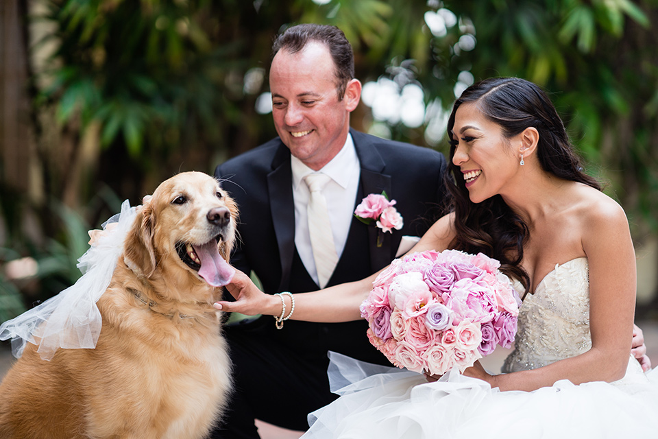 The bride in a mermaid style gown with a sweetheart neckline and the groom in a black tuxedo with a white long tie with their golden retriever