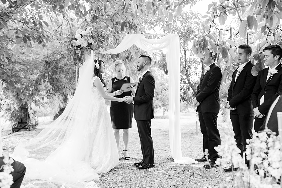 bride in a white trumpet style gown with a long train and the groom in a black tuxedo, the bridesmaids in light blush gowns and black tuxedo