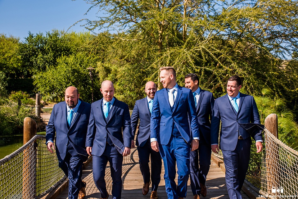 bride in a lace gown with a strapless neckline, groom in a cobalt blue suit and long tie, groomsmen in cobalt suits with teal ties, bridesmaids in bright teal gowns